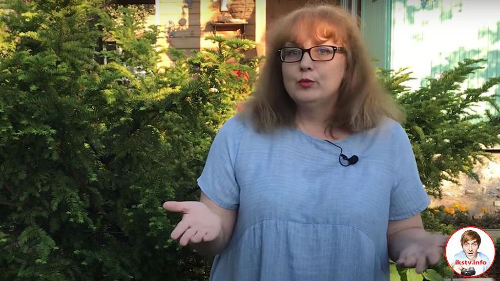 вДудь получило втык от учительницы русского языка