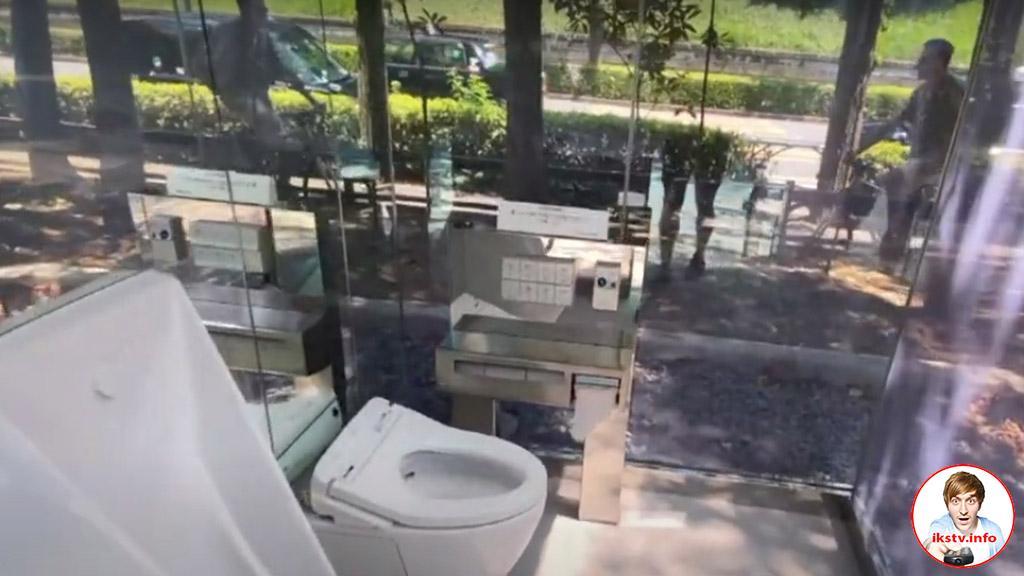 """И фонарик: на """"ОТР"""" рассказали о японских прозрачных туалетах"""